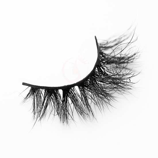 Wholesale lashes DJ24(2)
