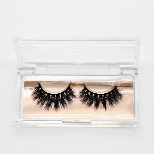 acrylic clear eyelash cases